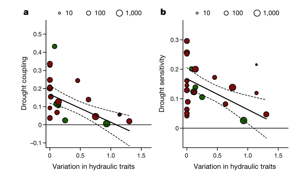 Figure 2. Hydraulic diversity of forests regulates ecosystem resilience during drought.png